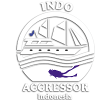 Indo Aggressor Luxury Liveaboard